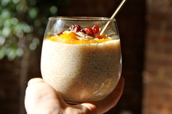 Quinoa Pudding with Cinnamon Ginger Mango Puree